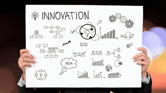 Delphinium - 5 Ways to Build Innovation into Your Business
